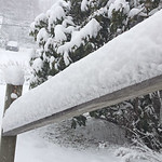 WP-Snow-Feb-5-accumulation-021116-FD